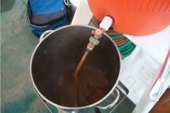2012 Big Brew Day