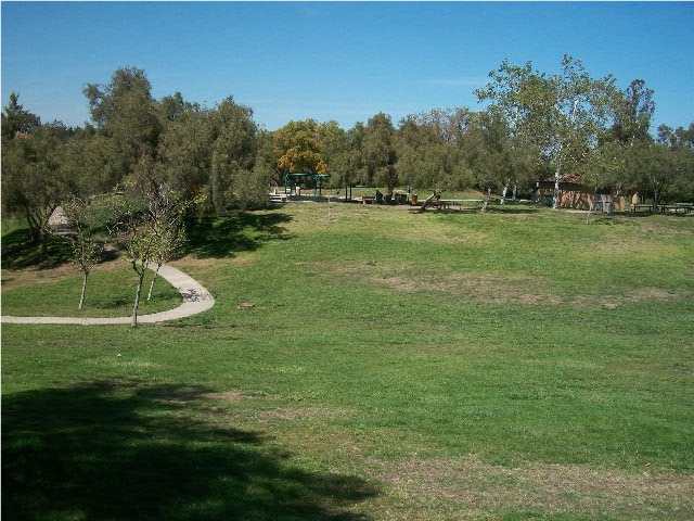 park_and_playground